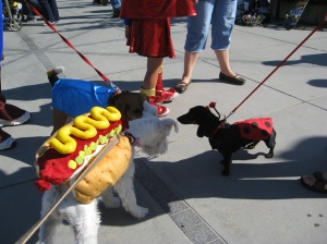 """Howl""-o-ween meetup with Beagle and Daschund."