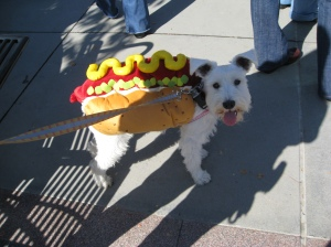 It's a hot day for a HOT dog.